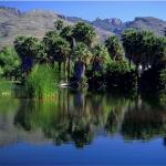 Tucson AZ Lot For Sale Bordering Agua Caliente Park
